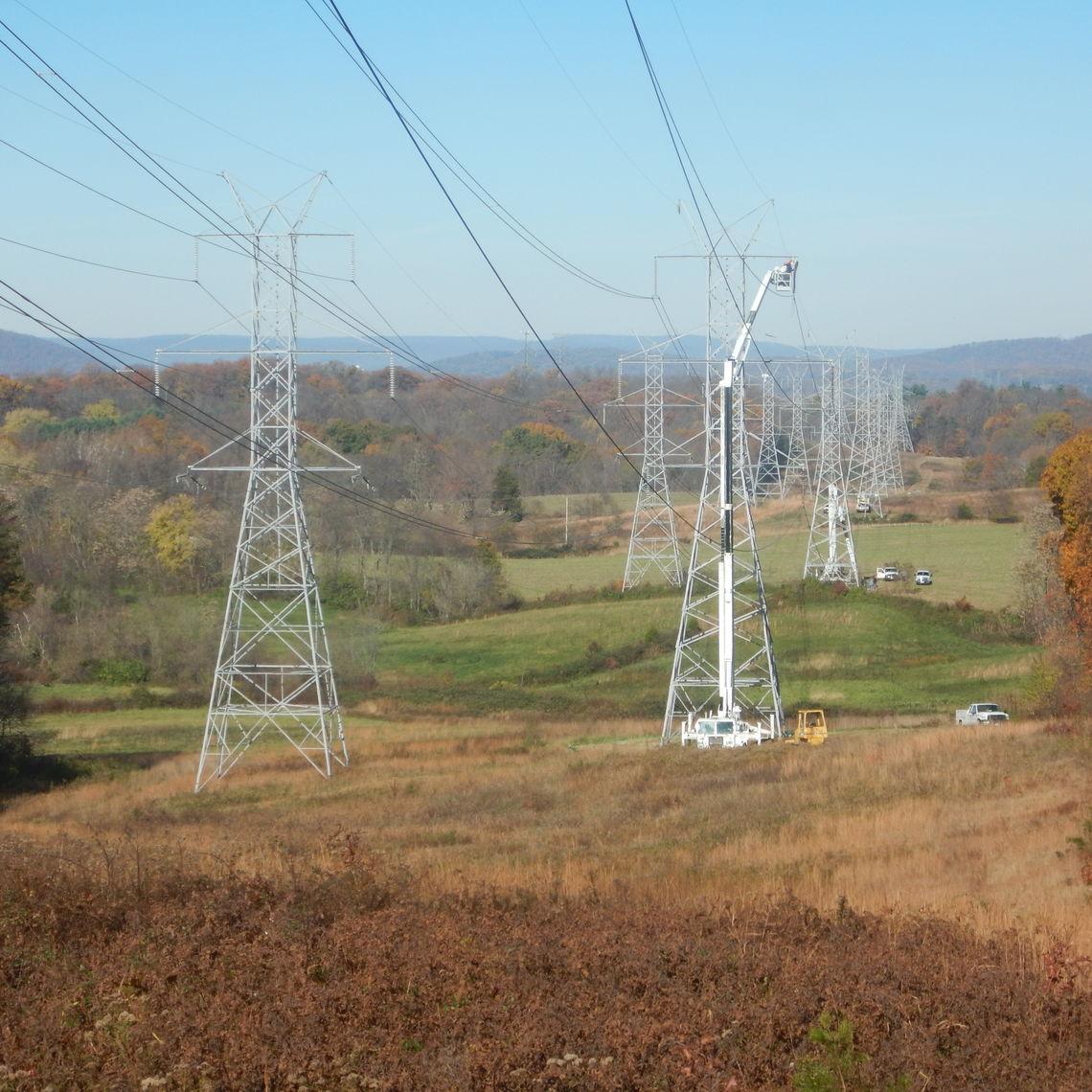 2010 Image 15