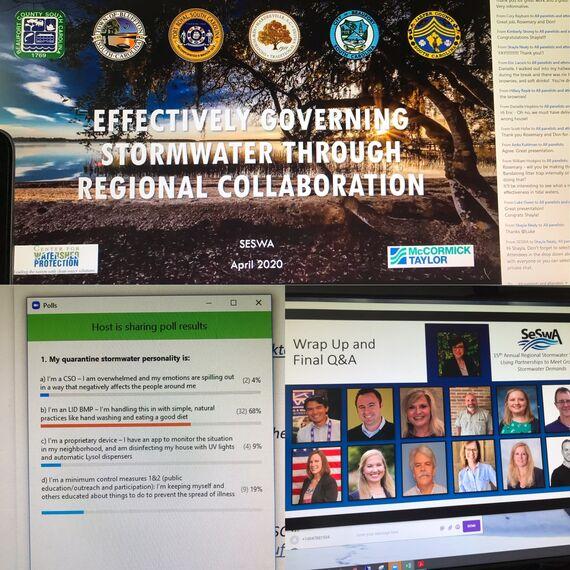 seswa virtual conference