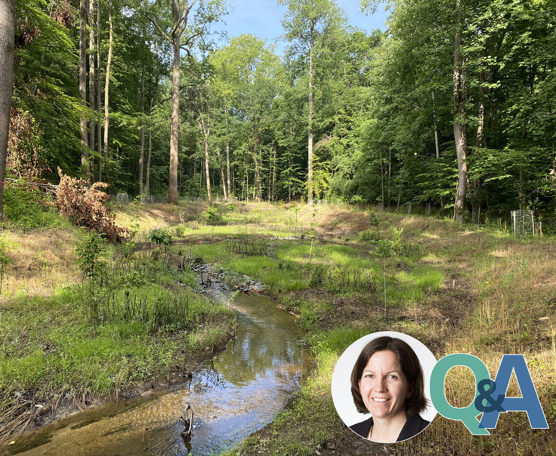 ASK A PROJECT MANAGER: TMDL STREAM RESTORATION AT ROSARYVILLE STATE PARK