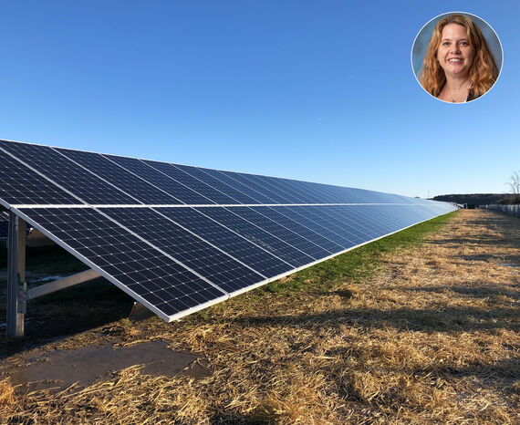 renewable tawnya